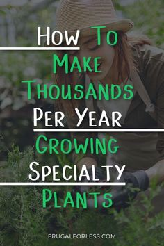 How to make thousands per year growing specialty plants. In this complete guide, we show you how you can grow certain plants and then sell them for extra cash. Growing Herbs, Growing Flowers, Planting Flowers, Cut Flower Garden, Flower Farm, Garden Nursery, Plant Nursery, Farm Business, Business Ideas