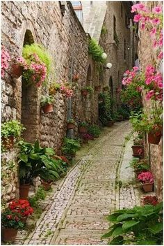 Saint-Paul de Vence, France.  One of the oldest medieval towns on the French Riviera.  Learn more about this charming place HERE: http://www.saint-pauldevence.com/en Image Source:  https://www.tripadvisor.com/Tourism-g187240-St_Paul_de_Vence_French_Riviera_Cote_d_Azur_Provence-Vacations.html