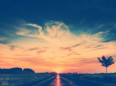 Into the sun sunset outdoors nature clouds sun tree Hello July, Panoramic Photography, Stunning Photography, Sunset Photography, Fashion Photography, Lets Run Away, Summertime Sadness, Album Photo, Happy Summer
