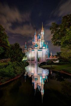 gorgeous photo of the Magic Kingdom by Andreas Helbig