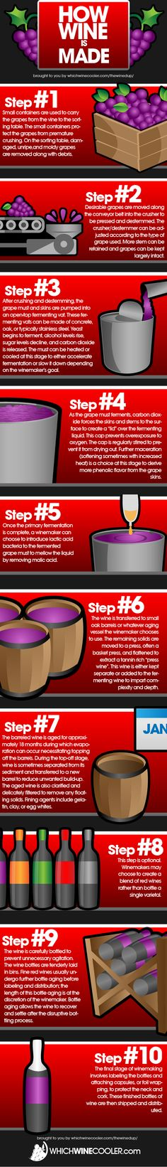#Infograph: How wine is made