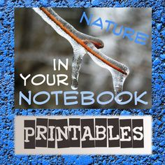 Free printables from two of our review authors and three other wonderful sites...