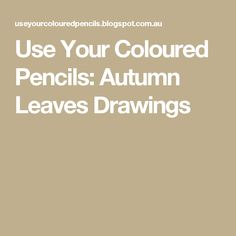 Use Your Coloured Pencils: Autumn Leaves Drawings
