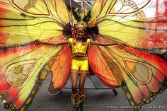 Carnival Costume of Batterfly: Shama St. Hilaire