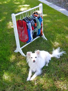 DIY Clothes  - check her blog she sews so cute stuff for her puppy and explains how to do it.