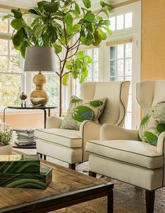Ivory wingback chairs with green piping