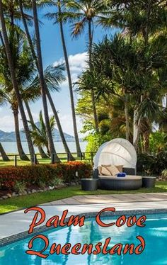 Check out the best Palm Cove Resorts and end up in a beautiful spot for an awesome vacation. Here are the top resorts in Palm Cove, Queensland. Amazing Hotels, Amazing Destinations, Best Hotels, Travel Destinations, Inclusive Holidays, All Inclusive Resorts, Luxury Resorts, Romantic Beach Getaways, Romantic Resorts