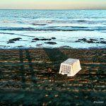 Lost at Venice beach Venice Beach, Lost, Photography, Photograph, Fotografie, Fotografia, Photoshoot