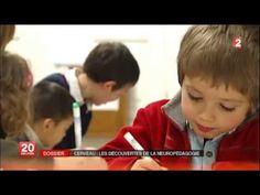 ▶ Cerveau: les découvertes de la neuropédagogie - France 2 - YouTube