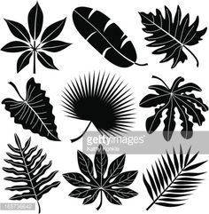 Vector Art : tropical leaves