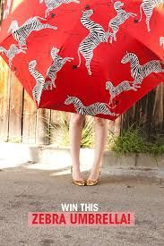 red zebra umbrella - Google Search