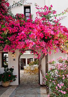 slim aarons once upon a time pinterest - Google Search
