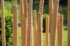 Sichtschutz aus Bambusstäbe