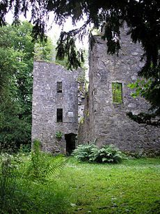 Finlarig Castle is an early 17th century castle standing on a mound on a peninsula between the River Lochay and Loch Tay, roughly 1 kilometre north of Killin in highland Perthshire, Scotland.