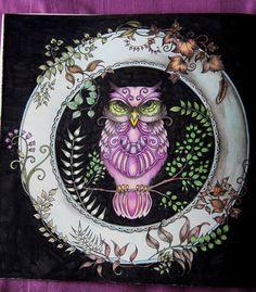 #adultcoloringbook #colormeditation #johannabasford #enchantedforest