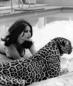 Natalie Wood's younger sister LANA with a leopard for a 1969 issue of Italian magazine ''Playmen'' New Yorker Stil, Black White Photos, Black And White, Foto Glamour, Shirley Jones, Veronica Lake, White Photography, Beauty And The Beast, Pin Up