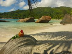 Seychellen Strand Mahé - Anse Takamaka