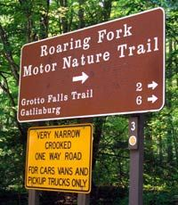 My vision of Heaven - the Roaring Fork Motor Nature Trail in Gatlinburg, TN. The most serene and beautiful place ever created. When you go to Gatlinburg, you *have to* drive this trail. ~~