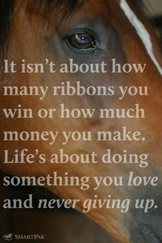 A good reminder to never give up the things we love most or stop chasing our dreams.so me and my horse (: being a team! My Horse, Horse Love, Horse Girl, Horse Head, Great Quotes, Quotes To Live By, Awesome Quotes, Inspirational Horse Quotes, Inspirational Thoughts