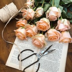 Am revenit la program normal:  luni - vineri: 9:00 - 18:30.  In plus, venim cu o veste buna si deschidem inclusiv in weekend,  sambata - duminica: 10:00 -14:00. 🌺🌸🤩🎉❤️ Floral Design, Dream Wedding, Floral Wreath, Bouquet, Wreaths, Bride, Garden, Flowers, Decor