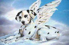 Adestramento de cães guia para deficientes visuais veja como funciona Giraffe, Lion Sculpture, Statue, Angels, Puppy Trainer, Mans Best Friend, Spirituality, Animals, Places