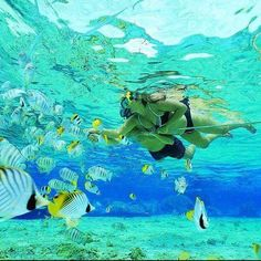 Scuba diving is offered at numerous locations at the best beaches around the world.