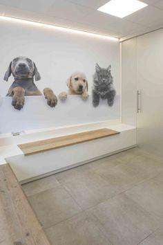 Dog Grooming Shop, Dog Grooming Salons, Dog Grooming Business, Pet Cafe, Pet Paradise, Dog Playground, Dog Spa, Pet Hotel, Dog Salon