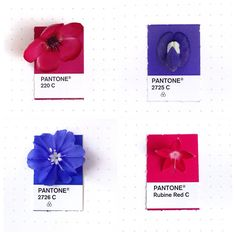 pantone Inka Mathew Tiny PMS Match