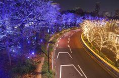 [도쿄여행] 도쿄의 가장 아름다운 크리스마스 일루미네이션, 롯폰기 도쿄 미드타운 크리스마스 일루미네이션 :: 도쿄 동경 베쯔니 블로그