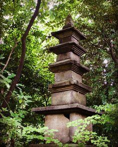 nezu_museum_tokyo_japan. #zen#garden#beautiful#landscape#nature #drygarden#zengarden#rockgarden #pond#bonsai#coi#carp#ornament #buddhist#temple #baskin#shrine#lantern#tourou#tukubai#moss#plants#green#sakura#momiji#mountain #travel#japan#trees
