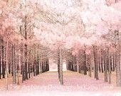"""Nature Photos, Dreamy Pink Surreal Nature Photo, Pale Pink Woodlands Trees, Fantasy Art - Fine Art Photography 8"""" x 12"""""""