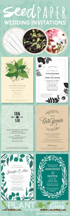 Stylish and eco-friendly wedding invitations that grow into flowers or herbs instead of leaving waste behind!