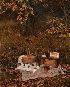Image uploaded by ✿❀adelya❀✿. Find images and videos about inspiration, gold and autumn on We Heart It - the app to get lost in what you love. Dark Autumn, Autumn Cozy, Autumn Aesthetic, Brown Aesthetic, Herbst Bucket List, Best Seasons, We Fall In Love, Home And Deco, Samhain