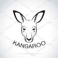 Vector of a kangaroo head. Graphics Vector of a kangaroo head on white background. Wild - Files Vector - Files JPE by