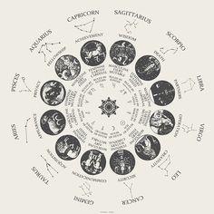 Algo que vocês sempre me perguntam quando falo sobre Astrologia é sobre as casas do mapa astral. Mais importante do que saber seu sol, ascendente e lua..