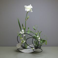 Decorations For Marriage Contemporary Flower Arrangements, White Flower Arrangements, Ikebana Flower Arrangement, Ikebana Arrangements, Purple Flowers, White Flowers, Beautiful Flowers, Exotic Flowers, Yellow Roses