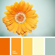 This palette is like both sunny and cloudy morning as a sunrise and sunset that are beautiful and incredibly different in content.
