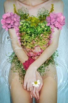 flowers, fiori , fleurs blumen, bloemen ( have a great week-end )