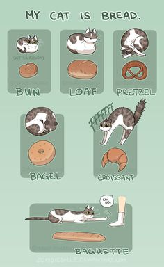 Cat Bread by Zombiesmile.deviantart.com on @DeviantArt