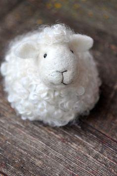sheep Mehr