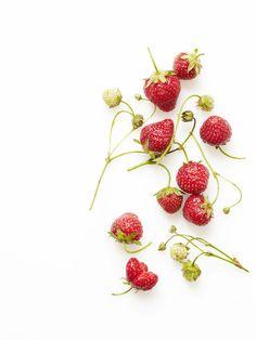 strawberries. in season.