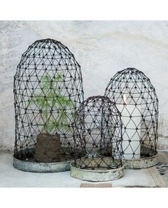 Vena Wire Display Domes (Set of 3) - Dassie Artisan