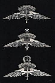 military freefall HALO - Google Search