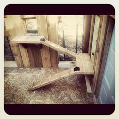 Old Wooden Playhouse Coop Conversion Cluckleberry Cottage Chicken Ladder, Chicken Roost, Chicken Coop Run, Chicken Coup, Chicken Tractors, Backyard Chicken Coops, Chickens Backyard, Chicken Perches, Chicken Feeders