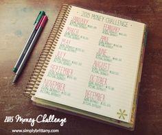 2015 Money Challenge in an #ErinCondren Life Planner