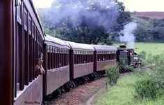 Passeio de Trem Maria Fumaça, de Tiradentes a São João Del Rei…  Fotografia de Marilia Amaral Renan