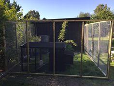 Hønsegård 3,6x3,6m