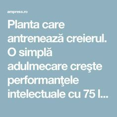 Planta care antrenează creierul. O simplă adulmecare creşte performanţele intelectuale cu 75 la sută | AM Press Spiritual Awakening, How To Get Rid, Metabolism, Good To Know, Natural Remedies, Health Tips, Health Fitness, Education, Cancer