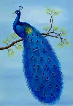 Peacock Artwork, Peacock Drawing, Peacock Images, Peacock Pictures, Peacock Painting, Fabric Painting, Good Morning Beautiful Pictures, Good Morning Images, Beautiful Images Of Friendship