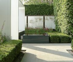 Chelsea Flower Show 2008 - The Savills Garden. Contemporary garden design. Pinned to Garden Design by Darin Bradbury.